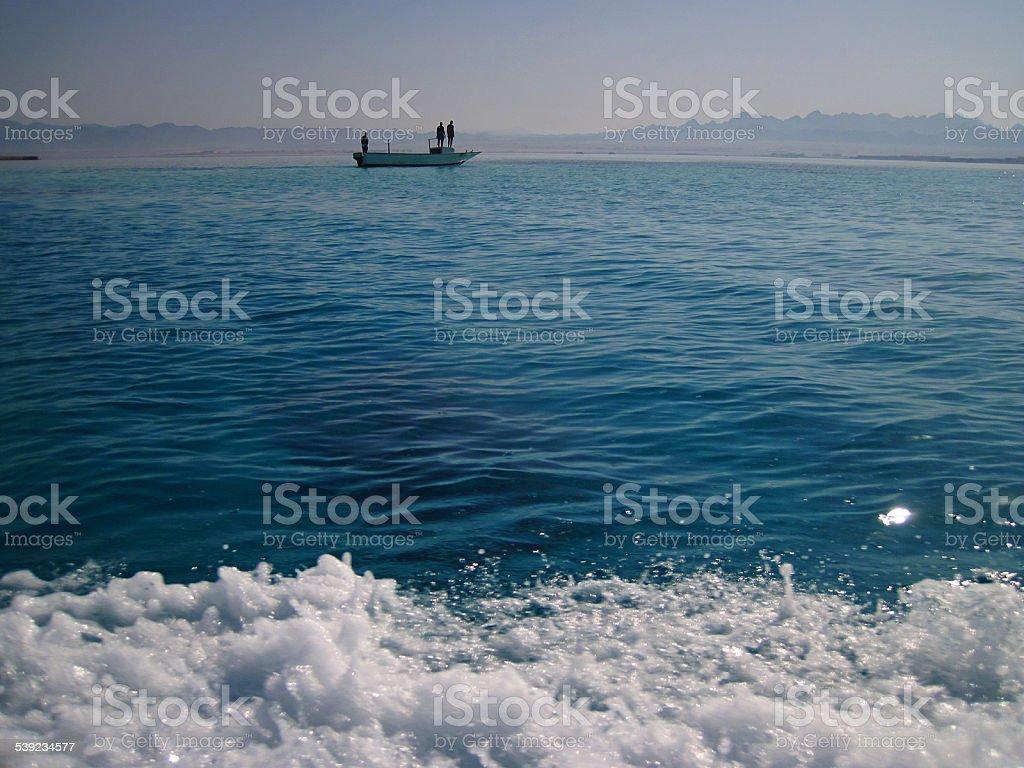 At the sea stock photo