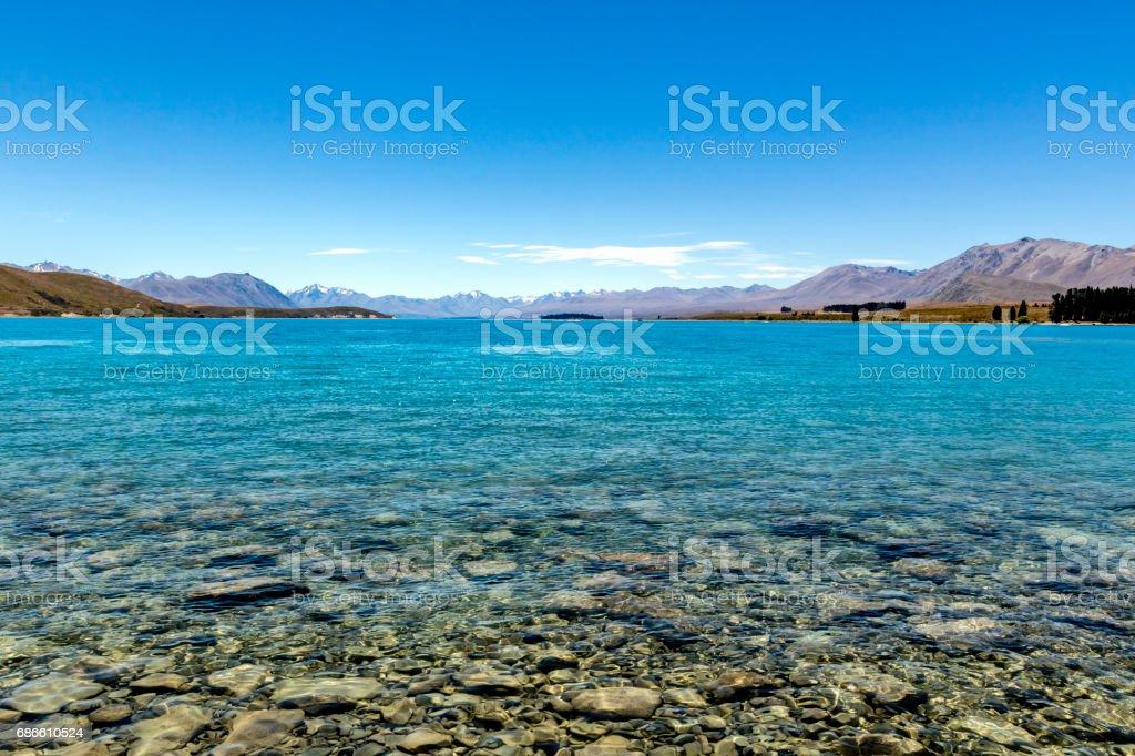 At the shore of Lake Tekapo stock photo
