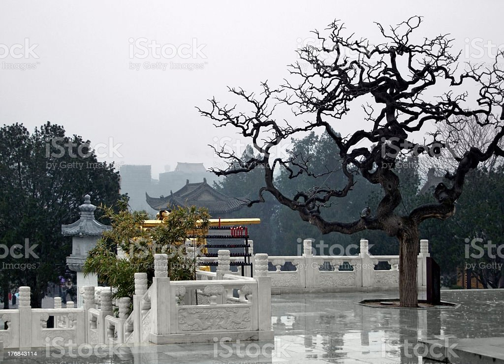 at Xi'an in China royalty-free stock photo