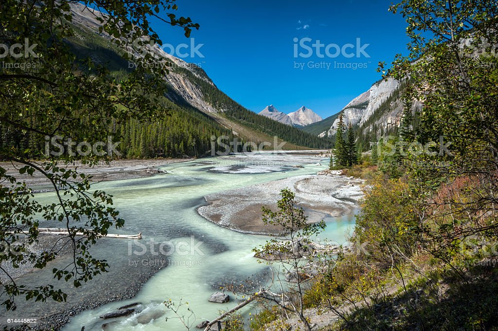 Athabasaca river in Banff National Park stock photo