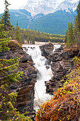 Athabasca Falls in autumn colors, Jasper National Park, Canada