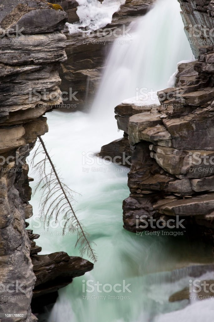 Athabasca Falls stock photo