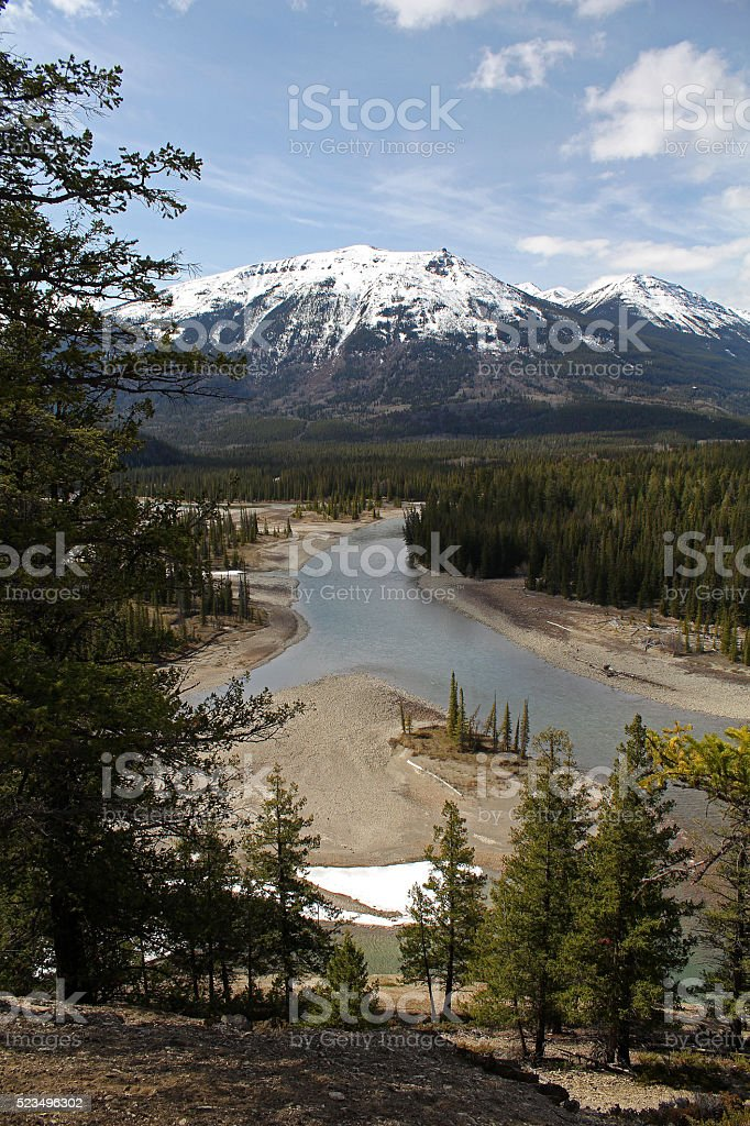 Athabasca River Near its Origins stock photo