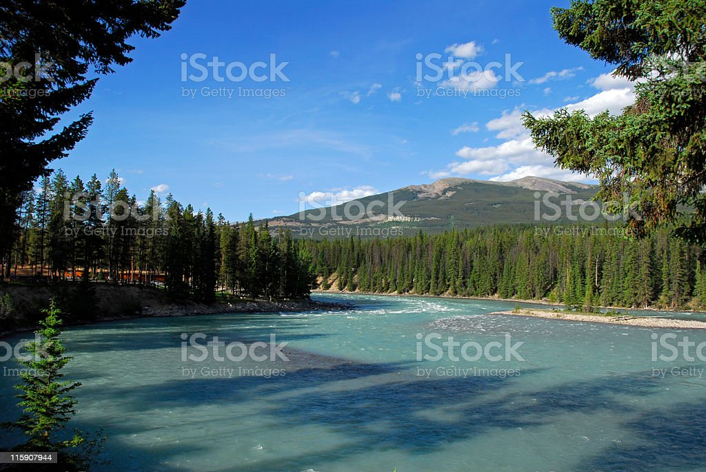 Athabasca River near Jasper,Jasper National Park,Alberta,Canada stock photo
