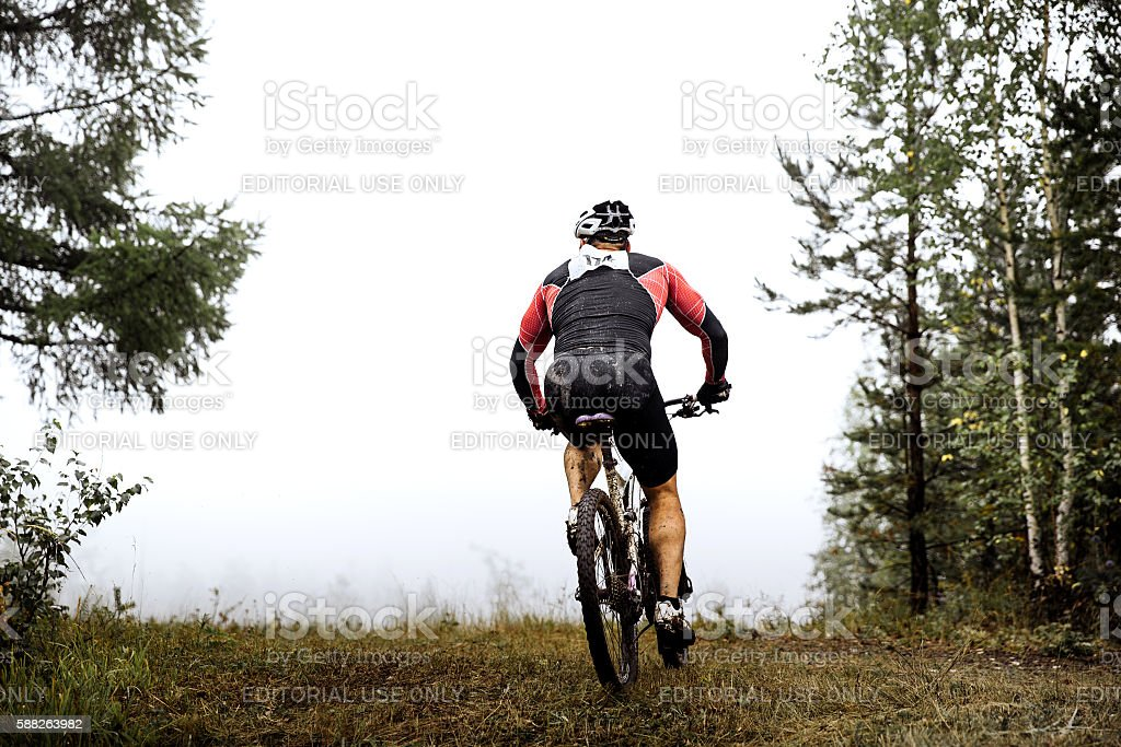 athlete a cyclist rides through forest royalty-free 스톡 사진