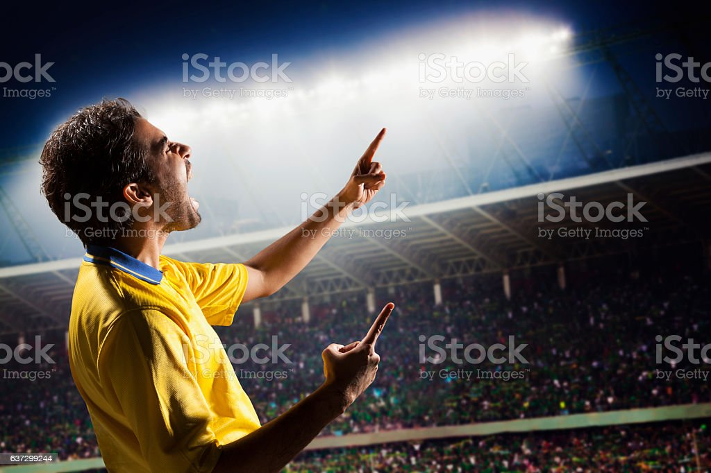 Athlete cheering with excitement in sports stadium arena stock photo