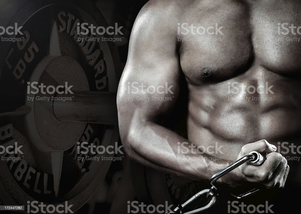 Athlete doing bicep curl in gym royalty-free stock photo
