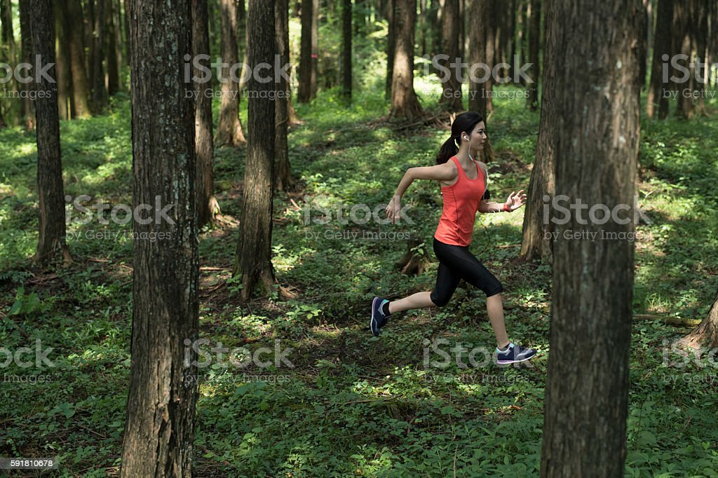Athletes running in the woods. stock photo