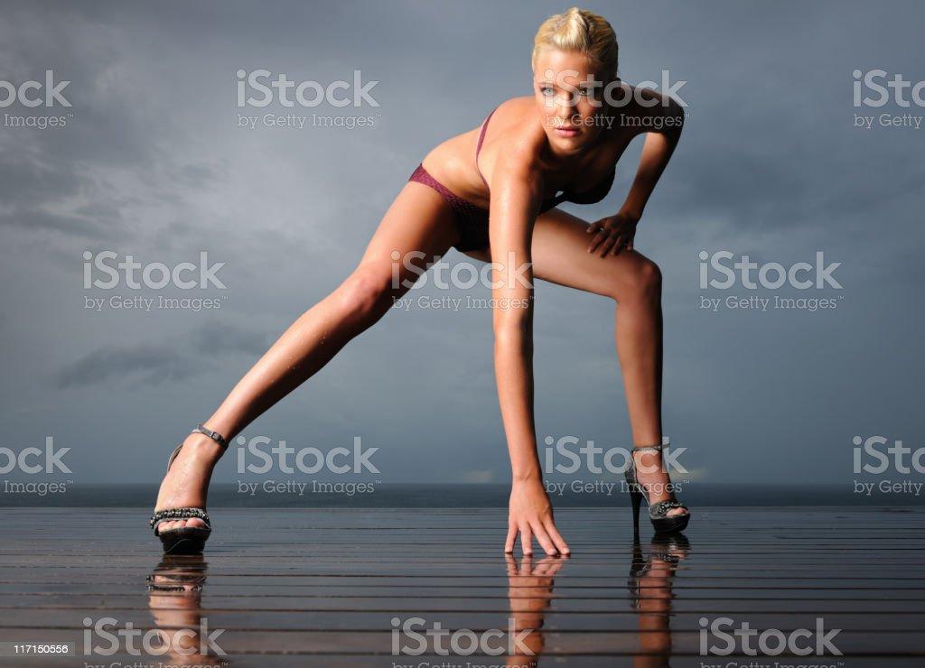 Athletic Fashion (XXXL) royalty-free stock photo