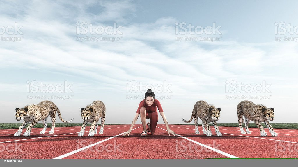 Athletic woman with a cheetah on track stock photo