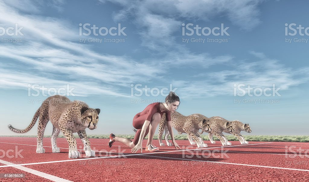 Athletic woman with a cheetah stock photo