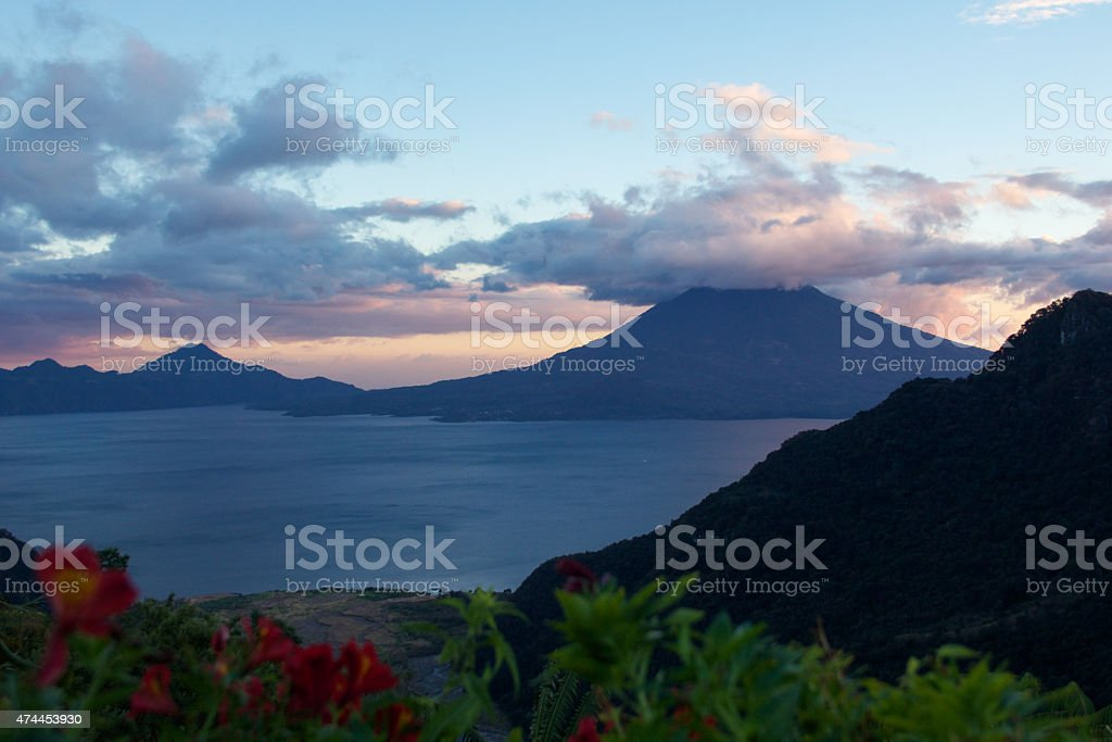 Atitlan Lake during sunset with red flowers stock photo