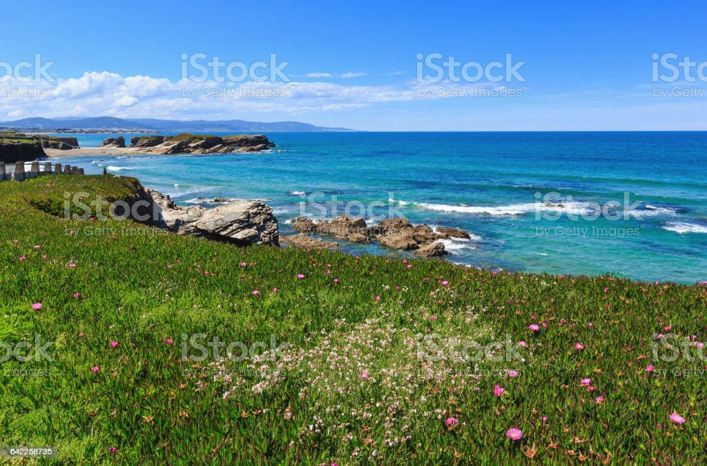 Atlantic blossoming coastline (Spain). stock photo