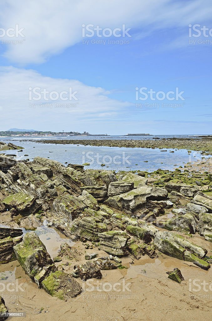 Atlantic ocean floor in time of the low tide stock photo