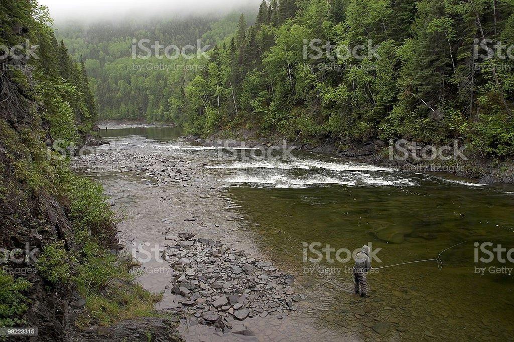 Atlantic Salmon Fishing - York River stock photo