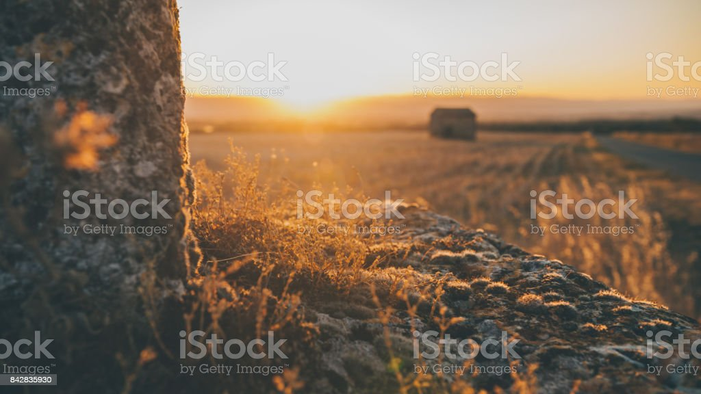 Atmospheric sunset colors with floodlight and backlight stock photo