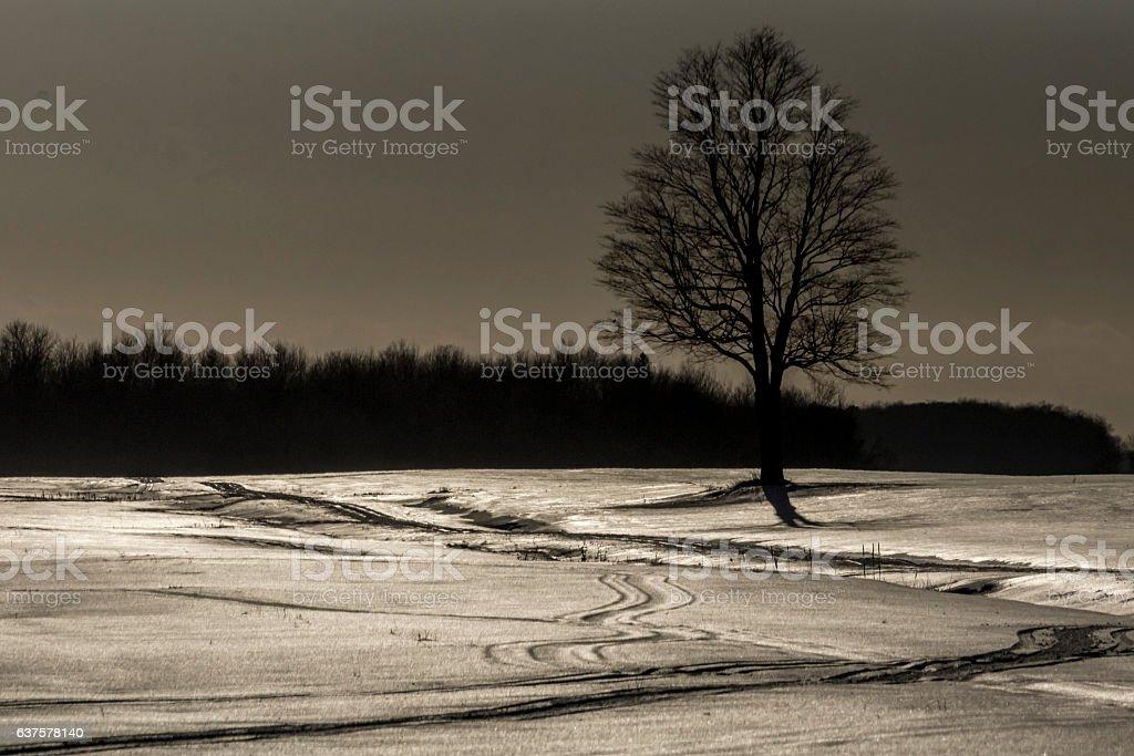 Atmosphère hivernale stock photo