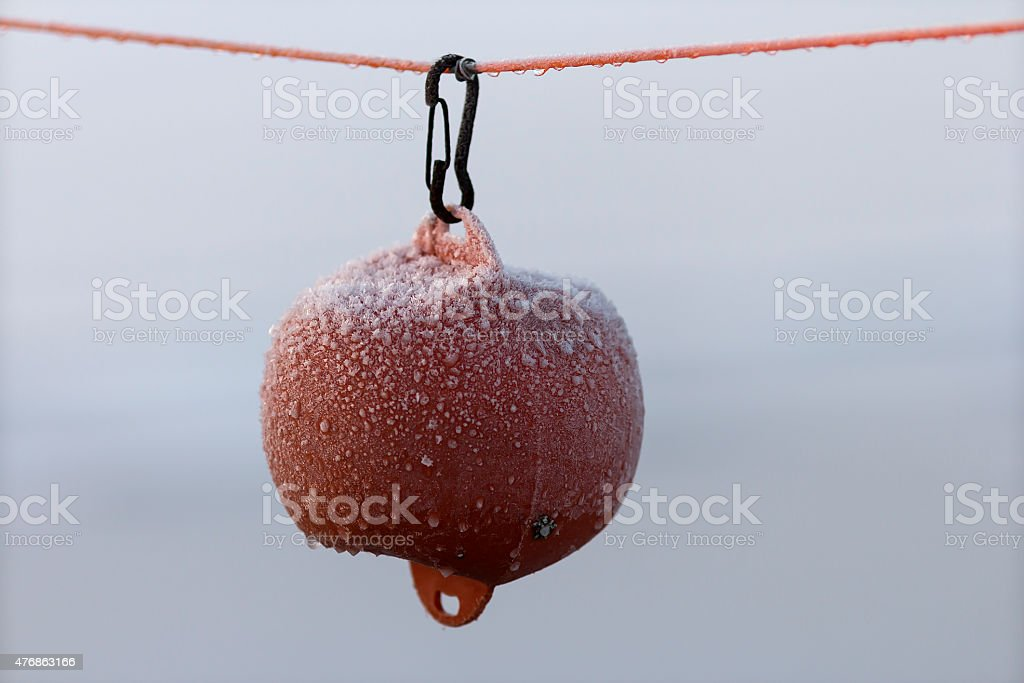 Attached to you royalty-free stock photo