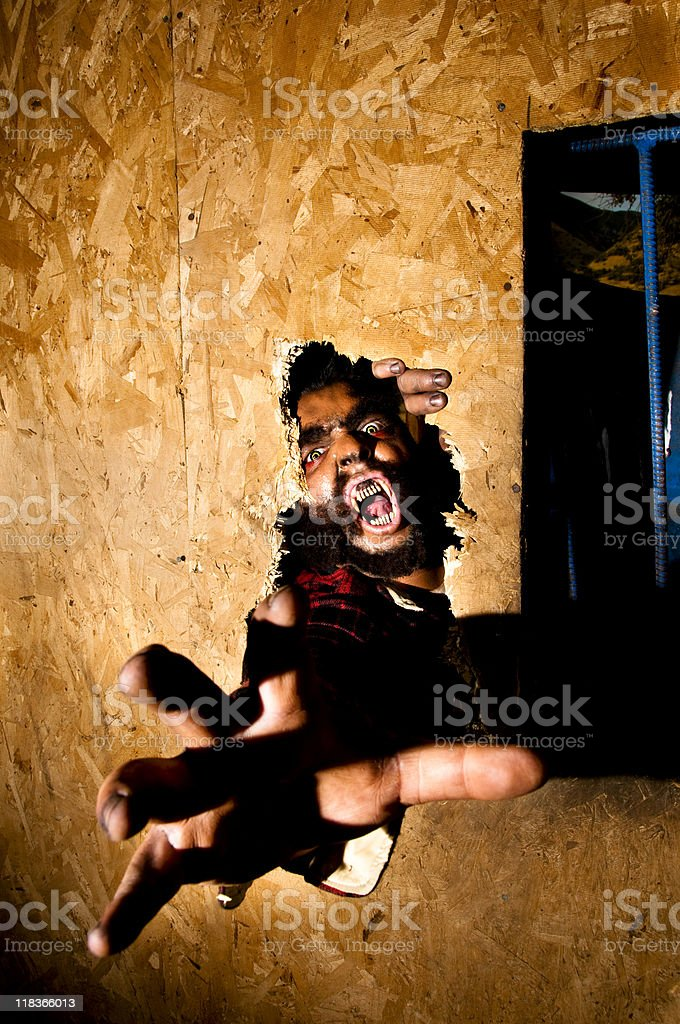 attacking werewolf stock photo