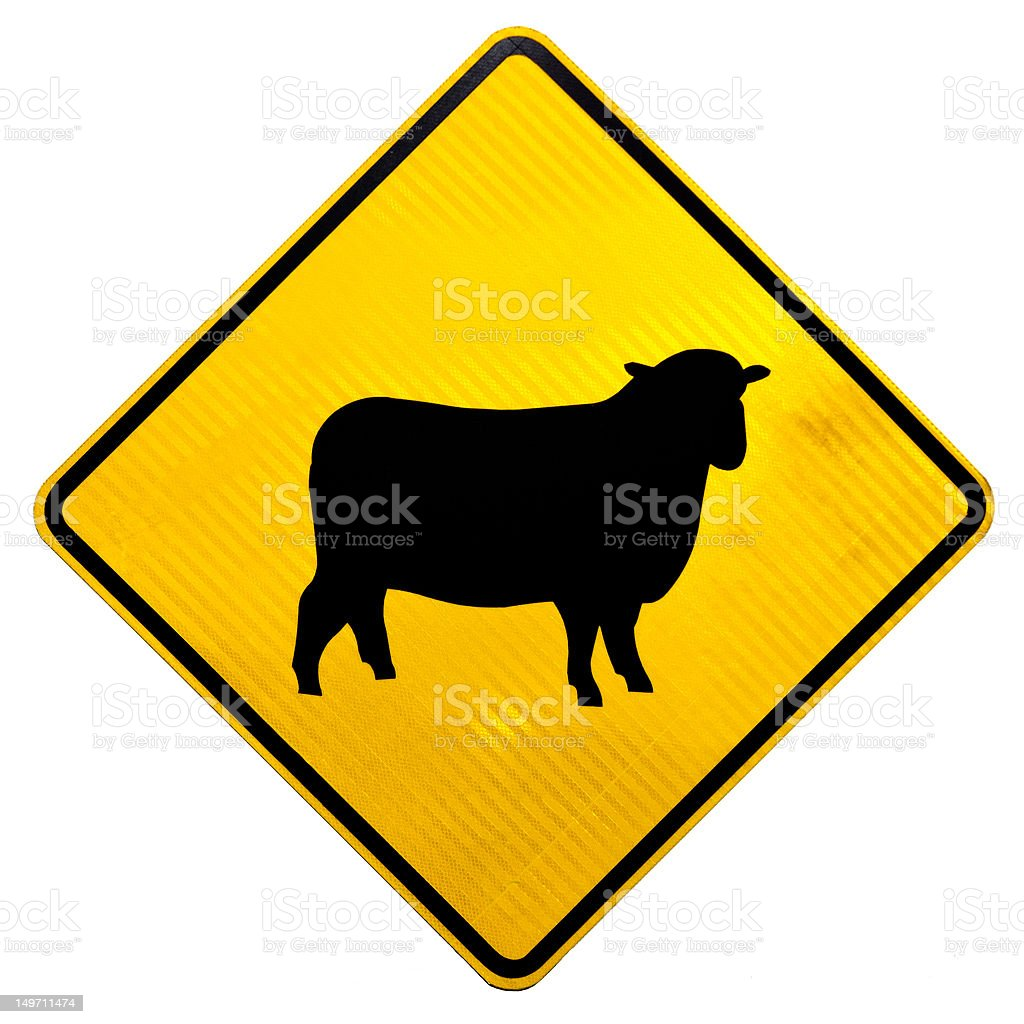 Attention Sheep Crossing Road Sign royalty-free stock photo