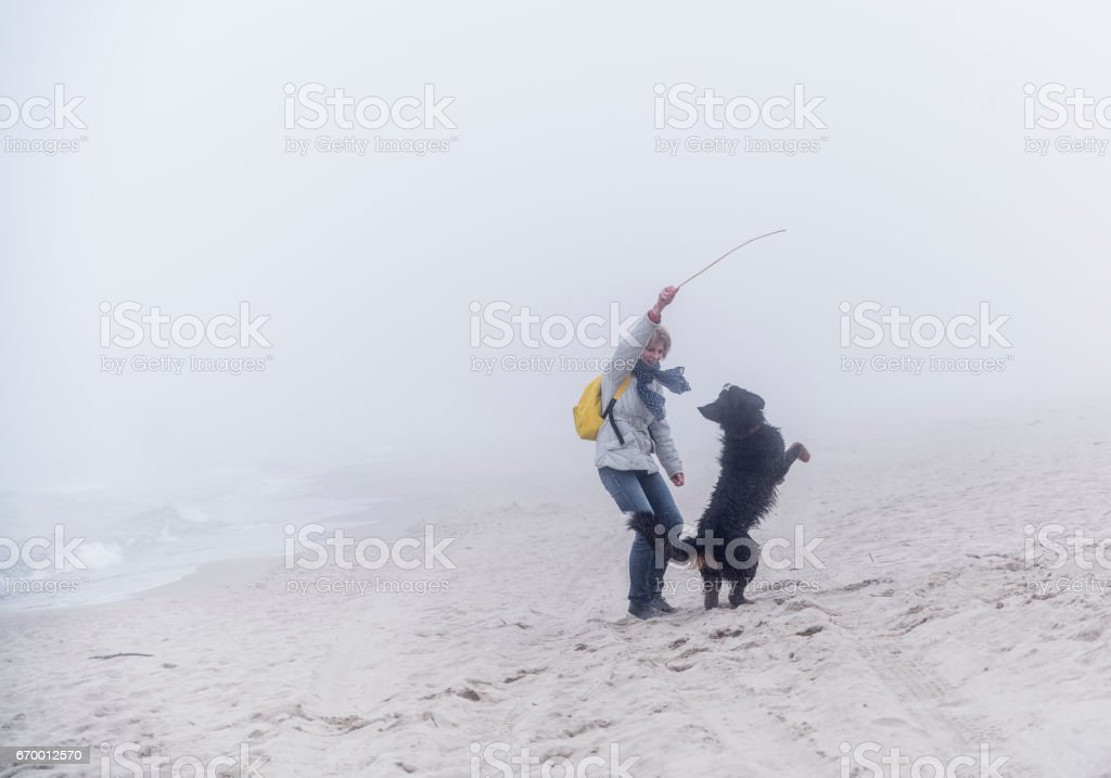 Attractive 50-yars-old-woman playing with the wet Bernese Mountain Dog on the beach stock photo
