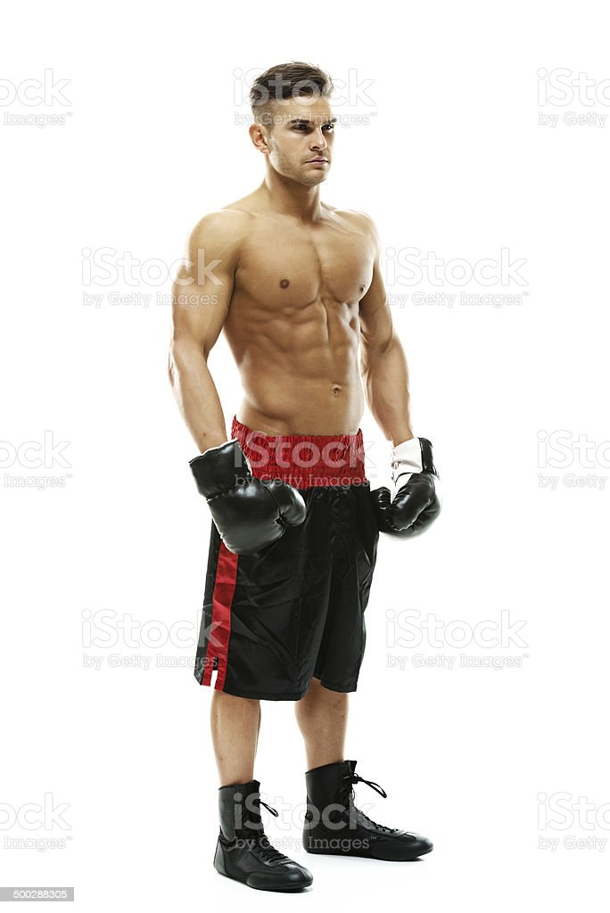 Attractive boxer standing royalty-free stock photo