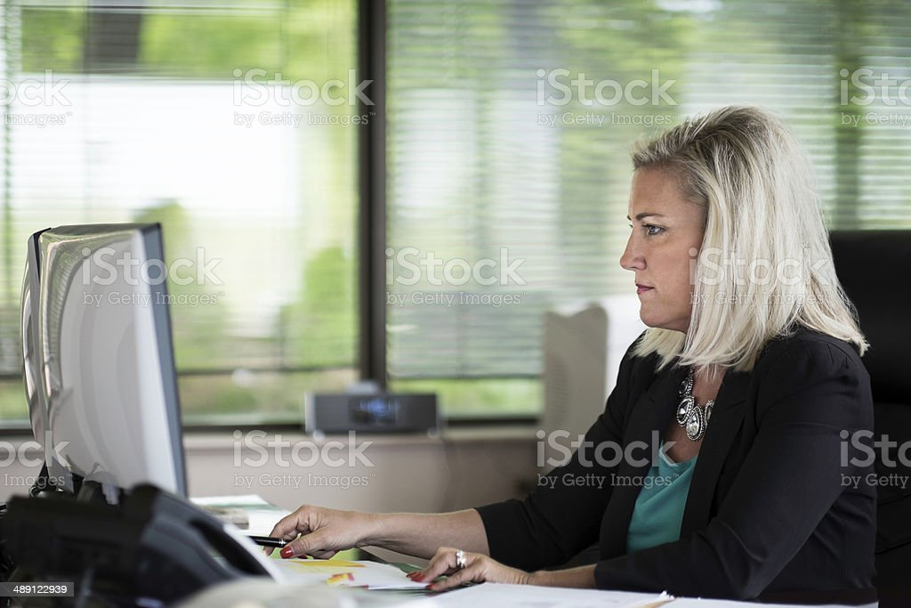 Attractive Female Executive Working on the Computer stock photo