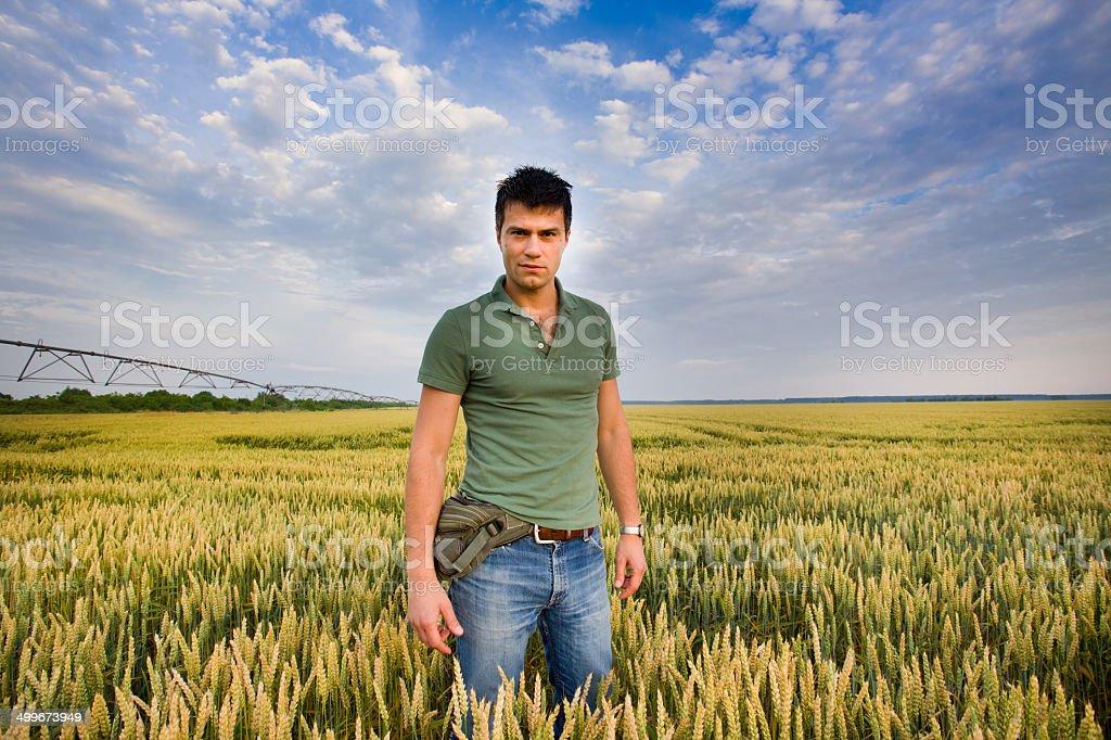 Attractive man in barley field stock photo