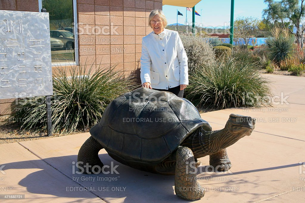 Attractive Senior Woman Patting Plastic Turtle royalty-free stock photo