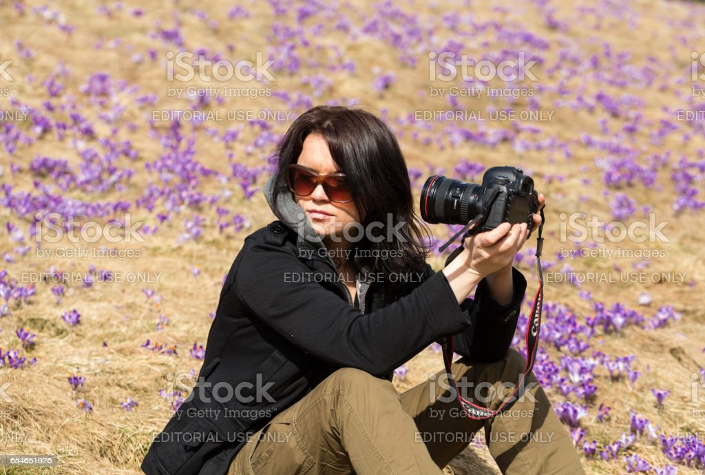 Attractive  woman  taking selfie against the background of flourishing crocuses. Chocholowska Valley, Poland stock photo