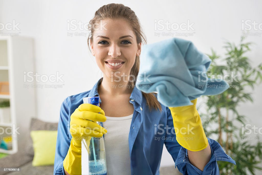 Attractive Woman Washing the Window stock photo