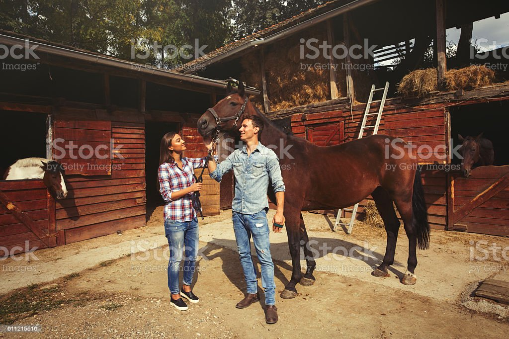 Attractive young couple grooming and stroking a brown horse. stock photo