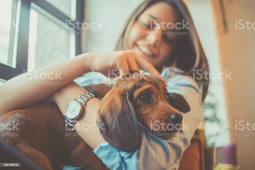 attractive young woman playing with puppy stock photo