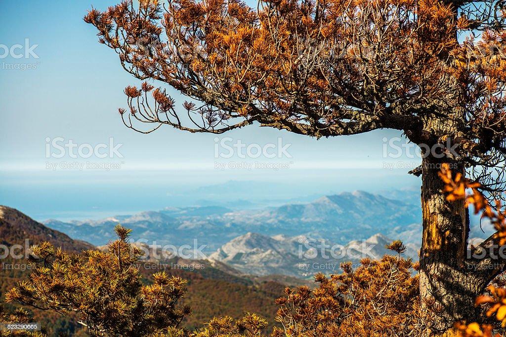 Atumn Mt. Orjen view to Adriatic coast of Croatia stock photo