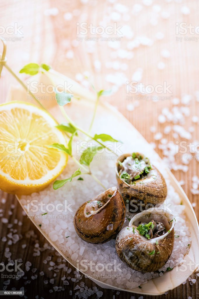 Au gratin snails stock photo