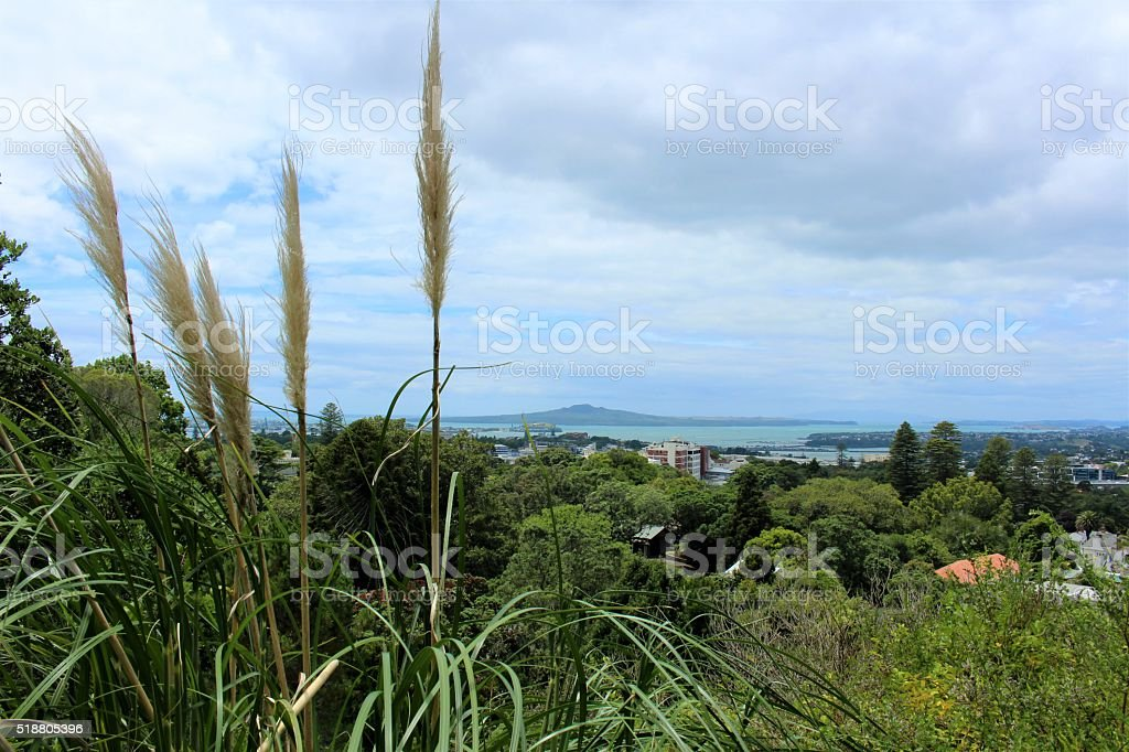 Auckland City and Rangitoto view stock photo