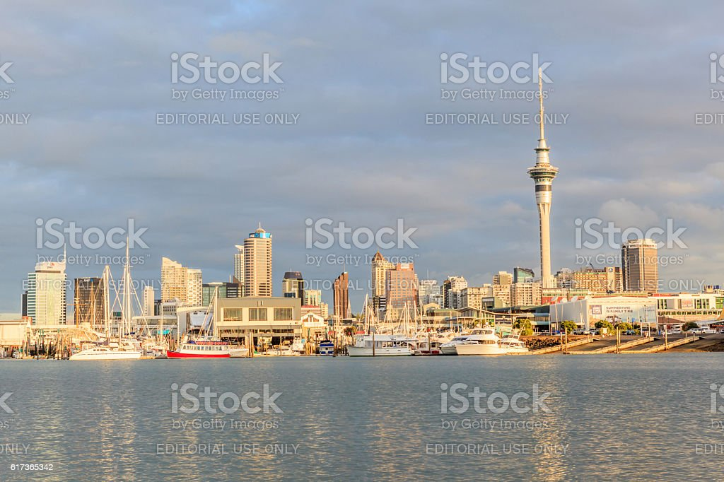 Auckland, New Zealand- December 9, 2013. Auckland city and skytower. stock photo