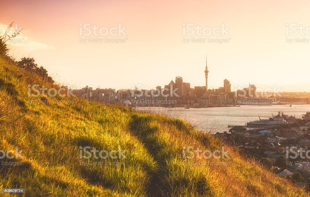Auckland City Skyline. stock photo