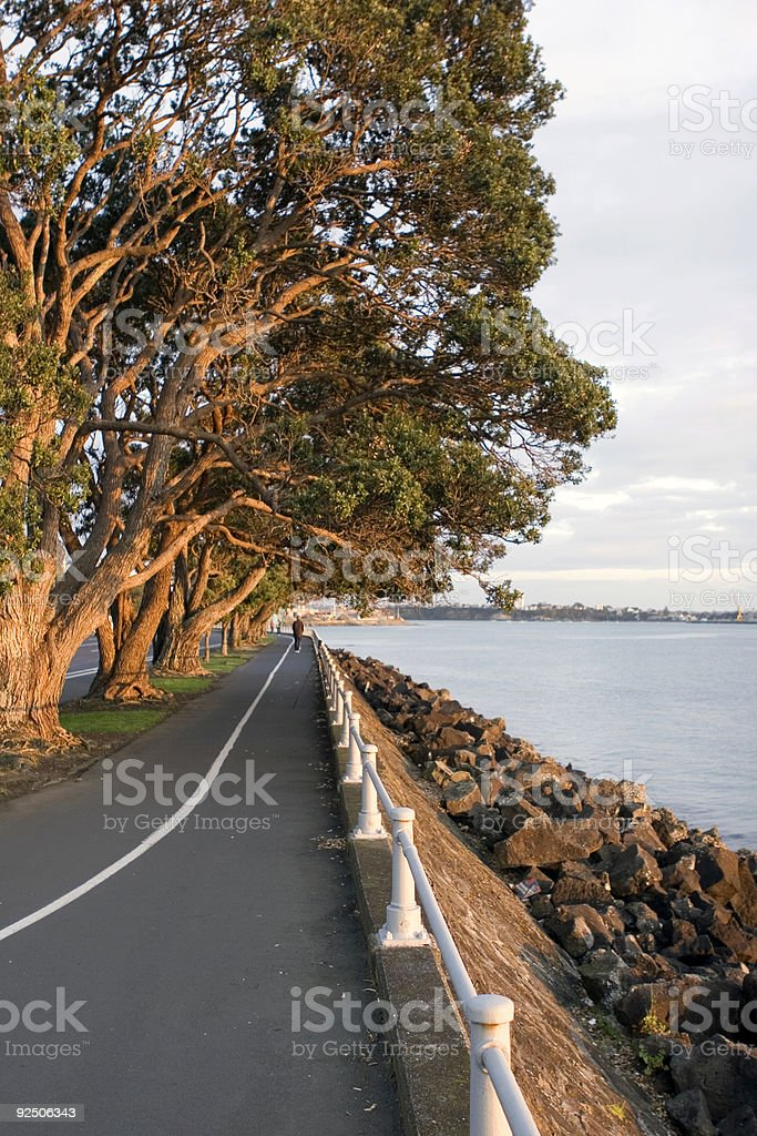 Auckland Forshore stock photo