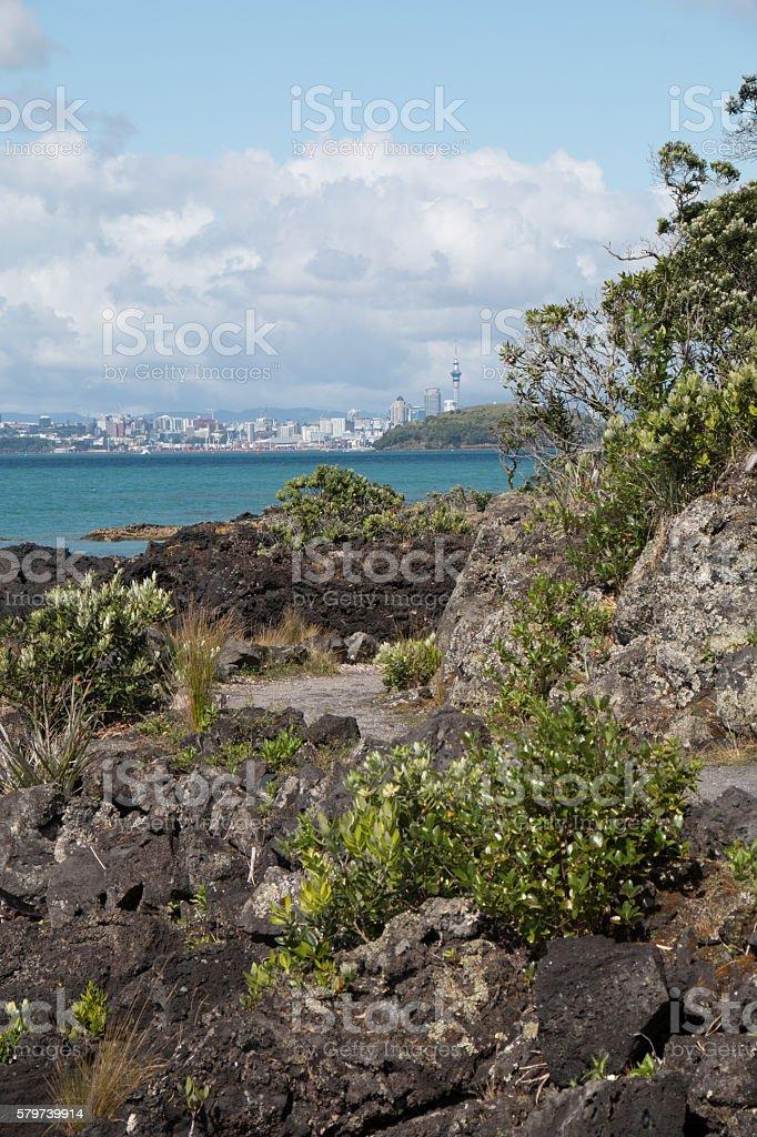 Auckland view stock photo