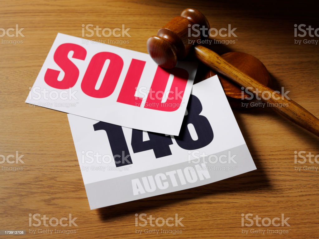 Auction Paddle and Gavel royalty-free stock photo