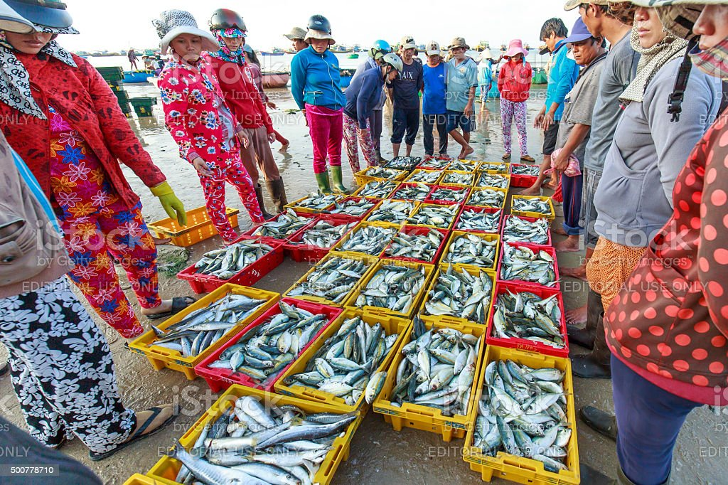Auctions fish markets in coastal fishing villages stock photo