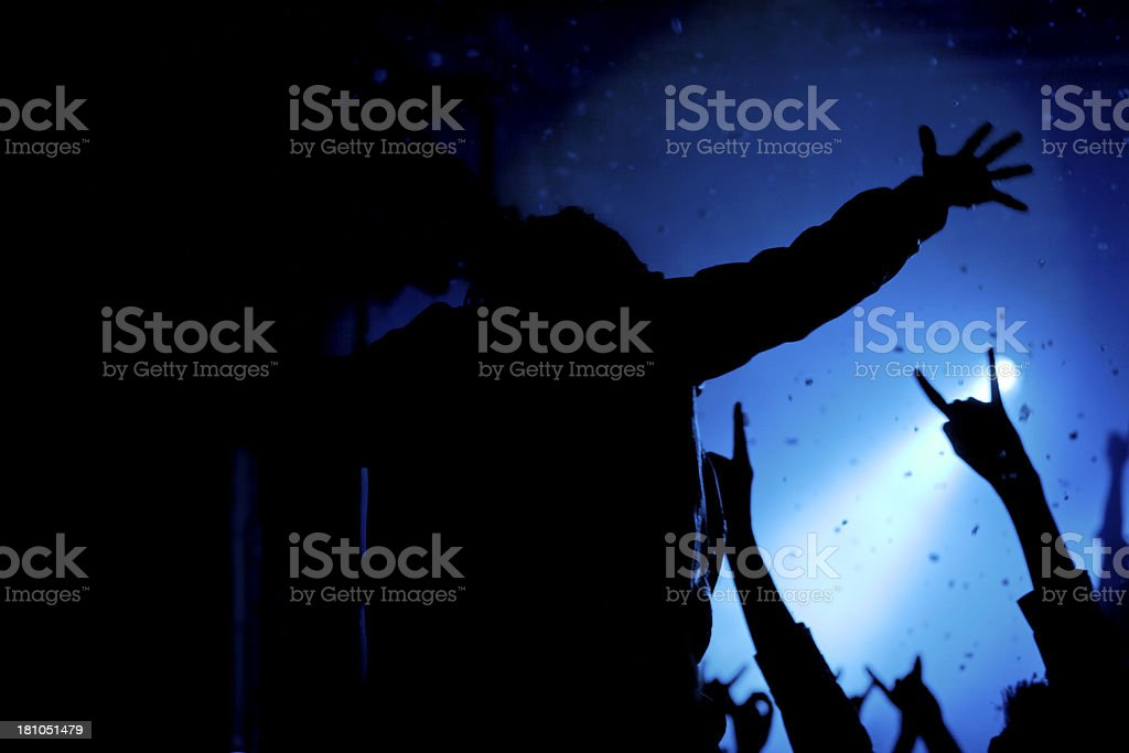 Audience at a music concert royalty-free stock photo