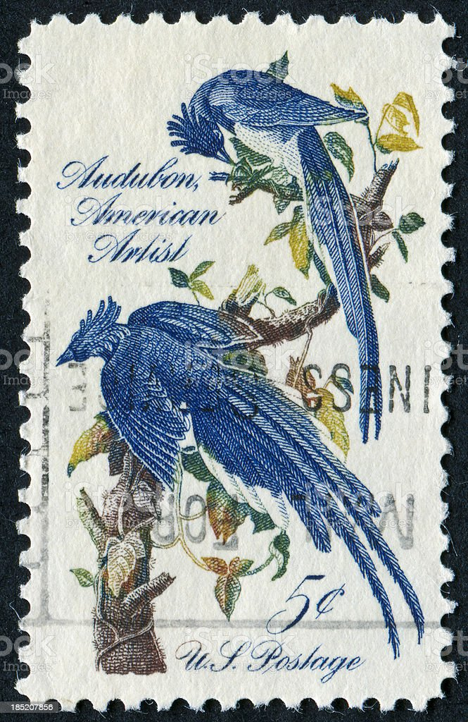 Audubon Stamp stock photo