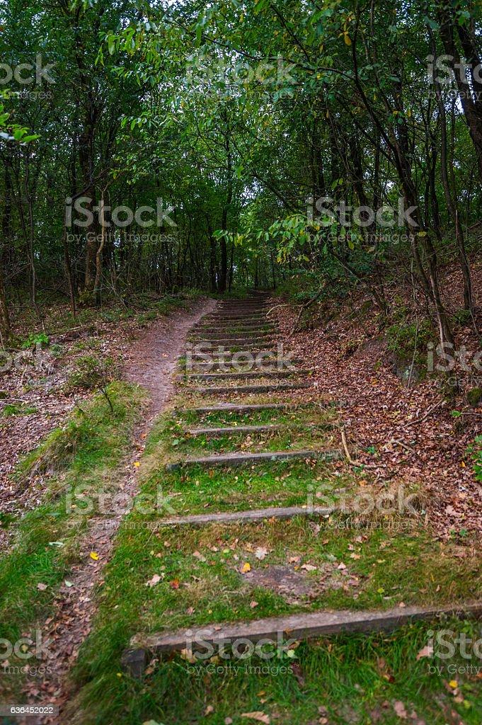 Aufstieg auf dem Wanderweg stock photo