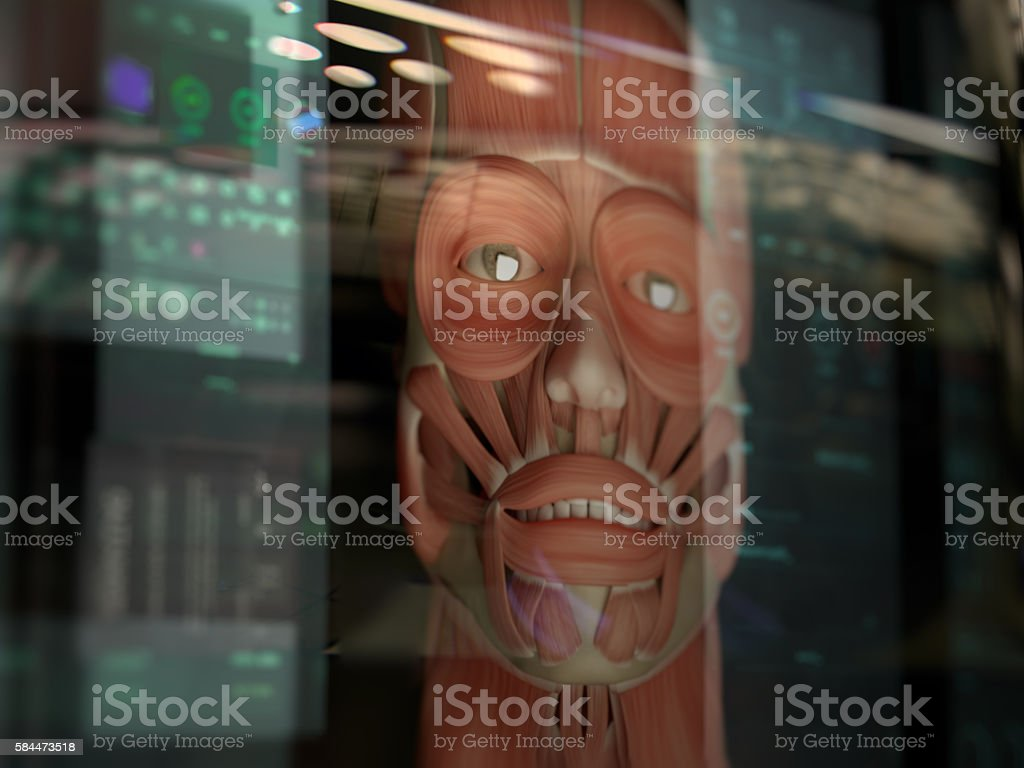 Augmented reality. Virtual human anatomy. stock photo