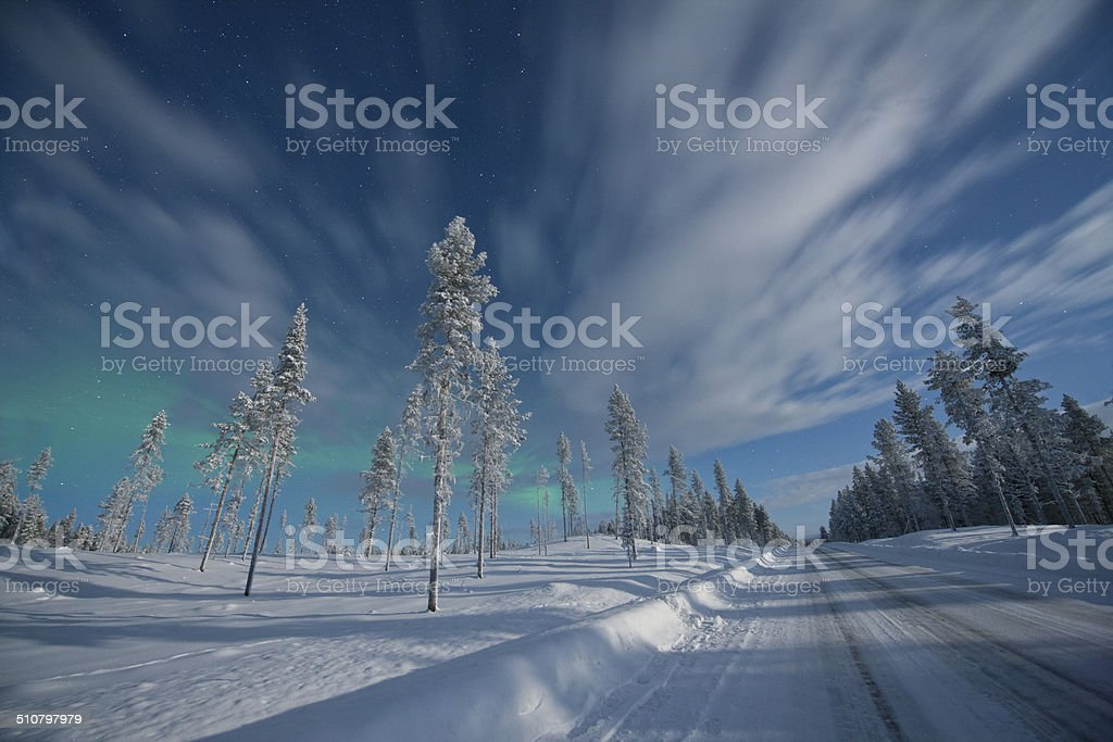 Aurora Borealis over frozen trees in the Arctic Circle stock photo