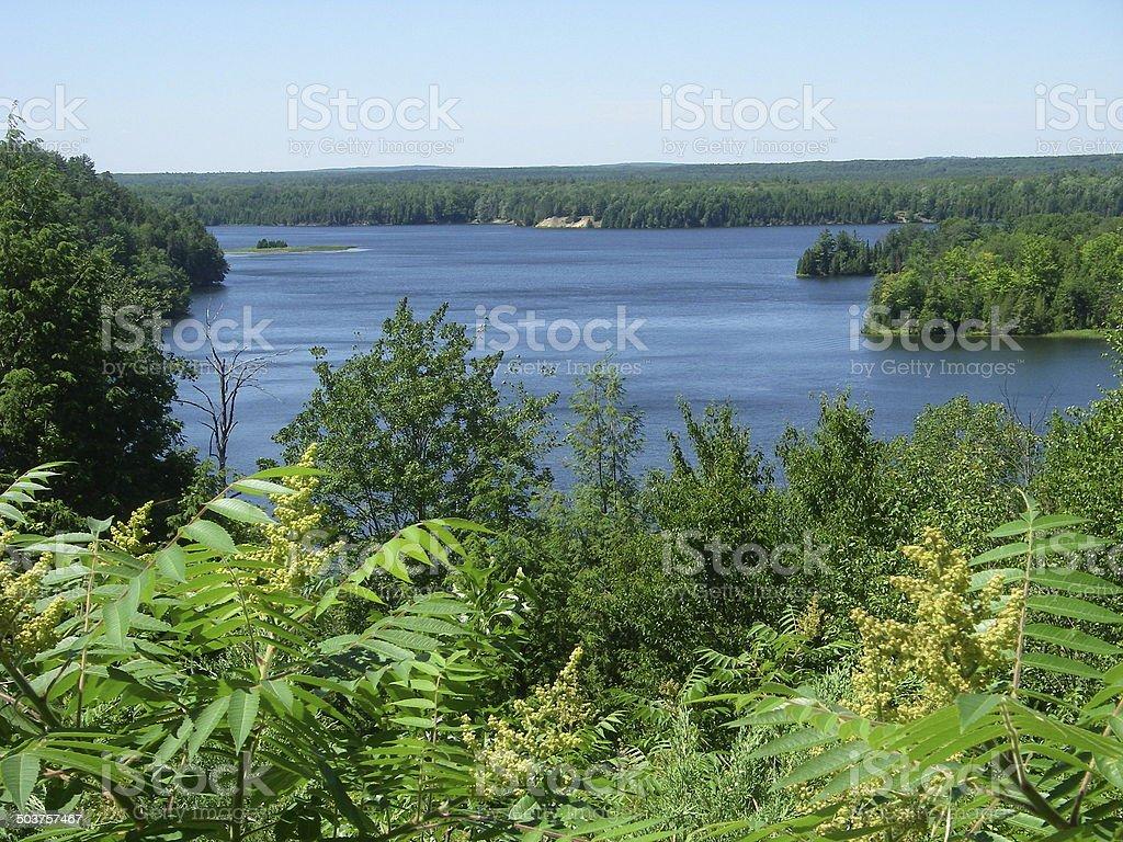AuSable River, Michigan stock photo