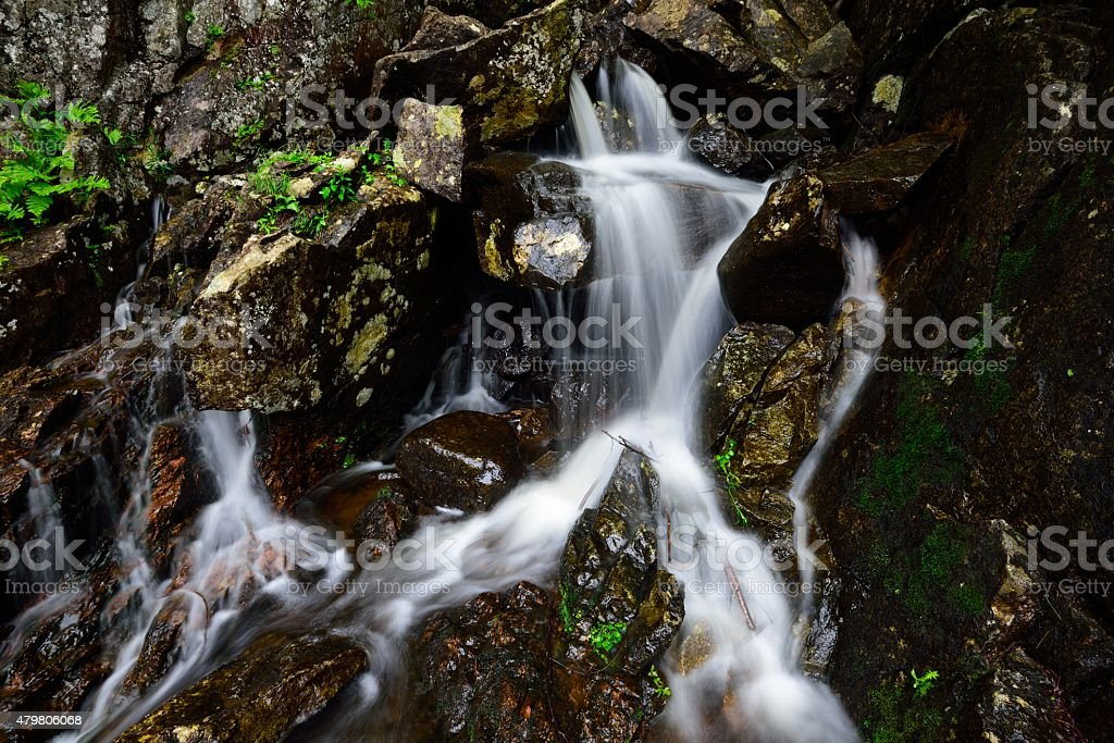 Ausable Tributary stock photo