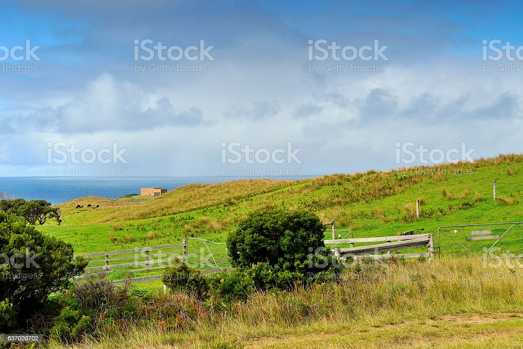 Australia Landscape : Great Ocean Road - Scenic Drive stock photo